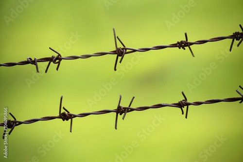 lines of barbed wire to demarcate the border Poster