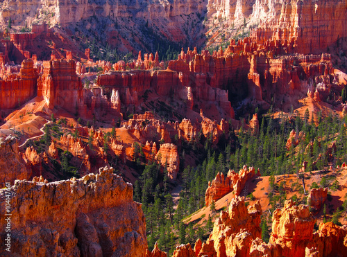 Foto op Canvas Rood paars The Bryce Canyon National Park, Utah, United States