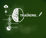 Training concept and brain.