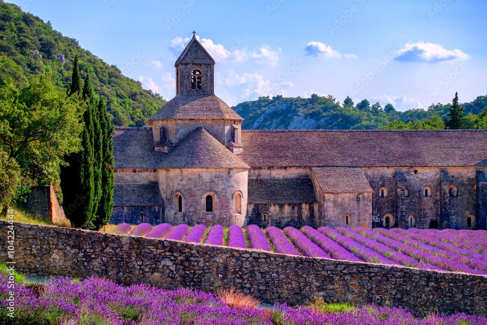 Fototapety, obrazy: Lawendowe pola przy Senanque monasterem, Prowansja, Francja