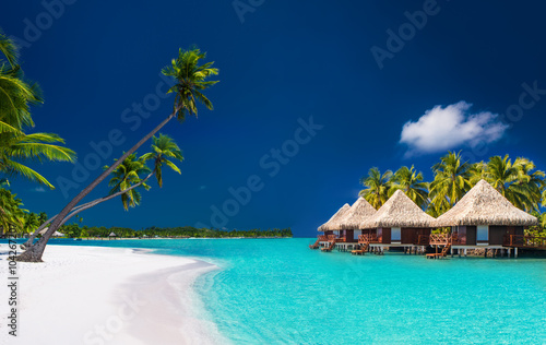 Poster Strand Beach villas on a tropical island with palm trees and white beac