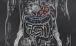 Leinwandbild Motiv Intestines Sketch with Guts Bacteria