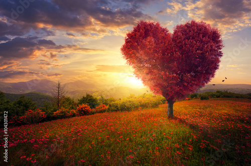 Deurstickers Landschappen Red heart shaped tree