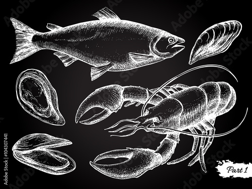 Poster  Vector hand drawn seafood chalkboard set.