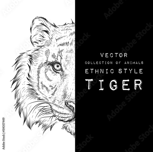 Photo Stands Hand drawn Sketch of animals Hand draw tiger portrait. Hand draw vector illustration