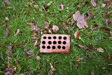 Perforated Tiling Brick On Green Grass With Leaves