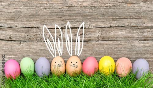 Fotografia  Easter eggs cute bunnies. Funny decoration