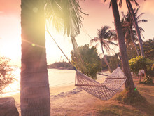Hammock On The Shore Of A Tropical Beach At Sunset