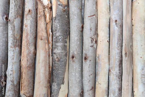 Aluminium Prints Firewood texture firewood in concatenation to wood background.