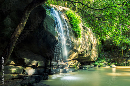 Serenity Falls in Buderim, Sunshine Coast, Australia. Located in the Buderim Forest waterfall walk.