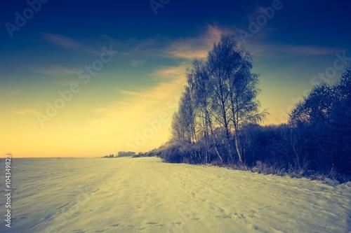 In de dag Zwavel geel Vintage landscape of winter field