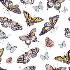 Fototapetawatercolor pattern with beautiful butterflies.
