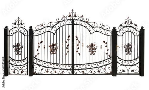 Obraz Iron gate - fototapety do salonu