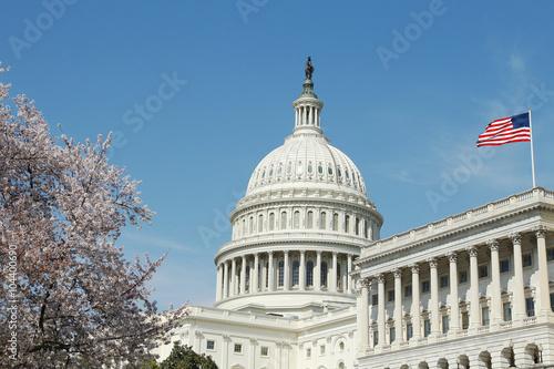Fotografia, Obraz  Capitol Building U.S. Congress