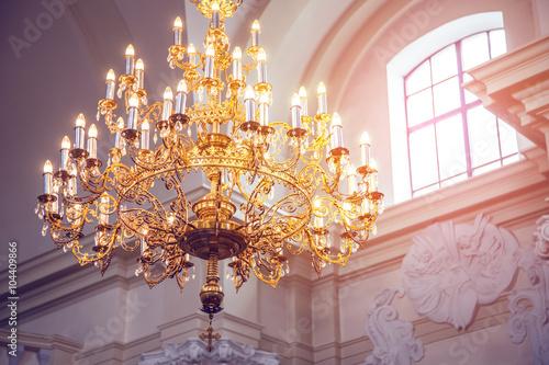 Cuadros en Lienzo Araña de palacio
