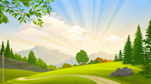 Printed kitchen splashbacks Beige forest and green grasslands around a lonely path
