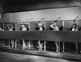 Row of women in public showers  - 104446242