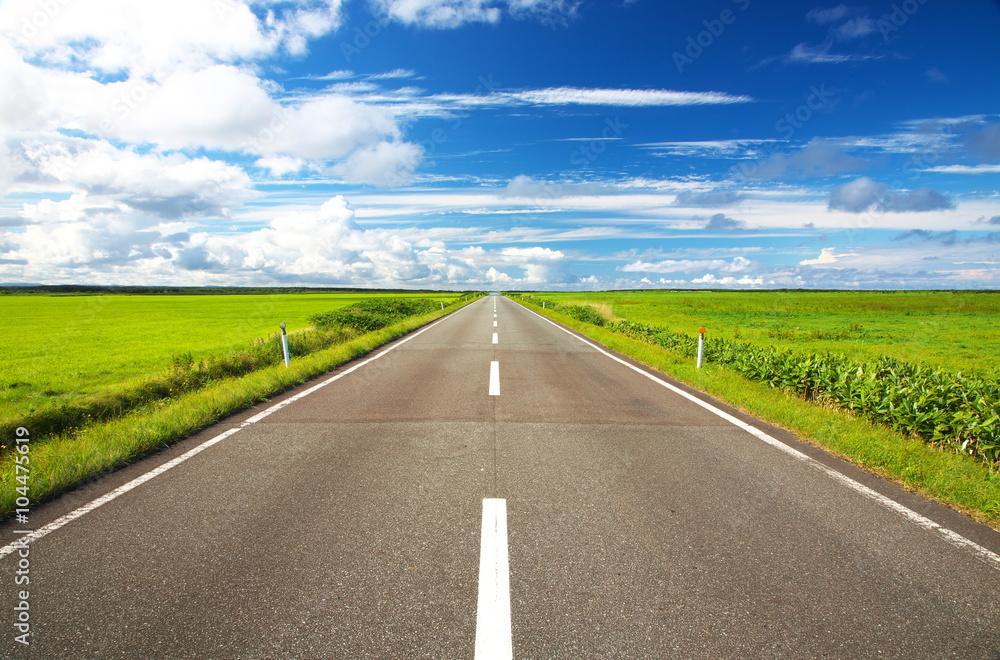 Fototapety, obrazy: 直線道路