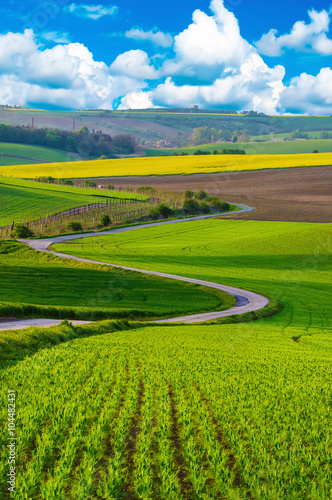 Foto-Lamellenvorhang - Rural landscape with green fields, road and waves, South Moravia, Czech Republic (von Roxana)