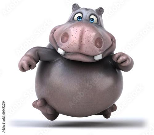Valokuva Fun hippo