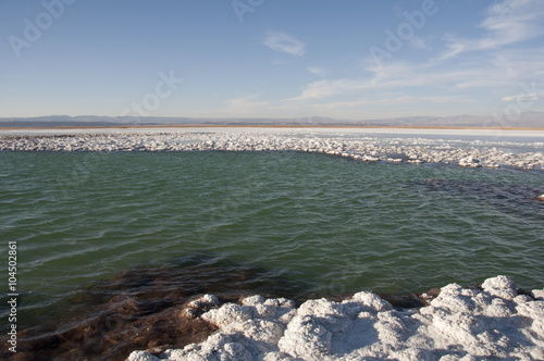 Laguna de agua salada y salar en el desierto de Atacama. Chile