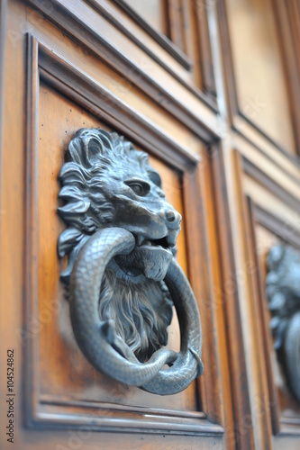 Photo  drop forged brass vintage door knocker in the form of a lion's head