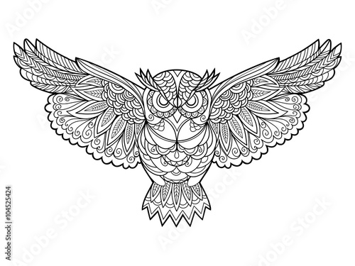 Poster Uilen cartoon Owl coloring book for adults vector
