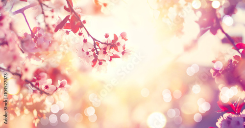 Poster Lente Beautiful spring nature scene with pink blooming tree