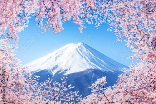 Fujiyama in Japan zur Kirschblüte - 104543026