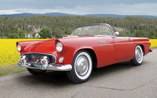 Ford Thunderbird 1956. All Log...