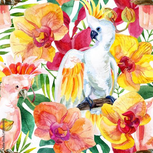 Fotografia  watercolor Australian Cockatoo seamless pattern