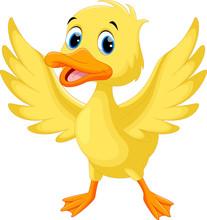Vector Illustration Of Cute Baby Duck