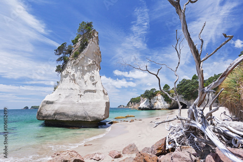 Foto op Canvas Cathedral Cove Cathedral Cove beach on Coromandel Peninsula