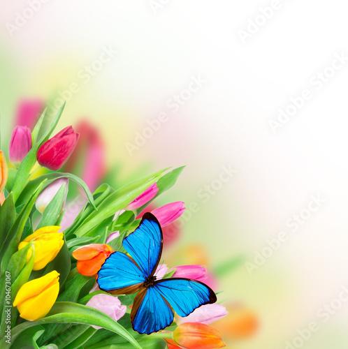 Deurstickers Vlinder Beautiful tulips bouquet with butterflies
