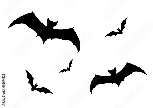 Photo Set of bats silhouette vector