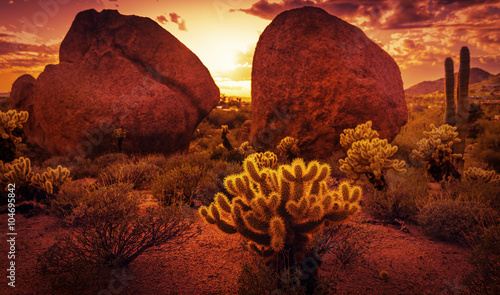 Garden Poster Bordeaux Dramatic desert scenery near Scottsdale red rock sunset