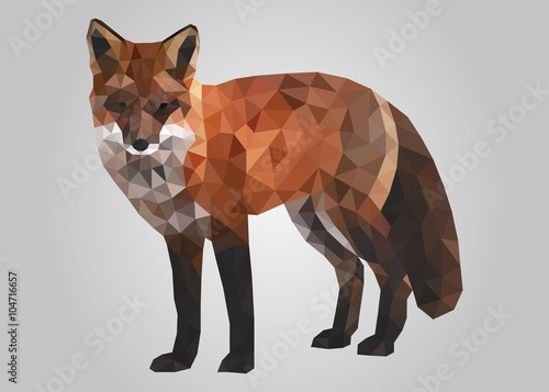 Obraz na płótnie rudy lis