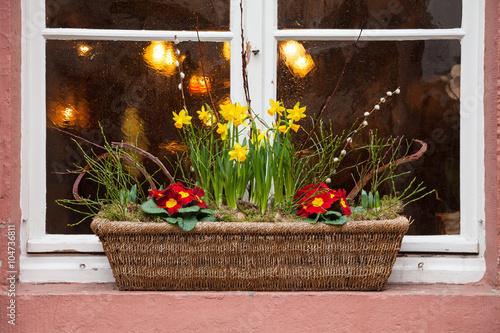 Fenster Mit Blumenkasten Mit Osterglocken Buy This Stock Photo And