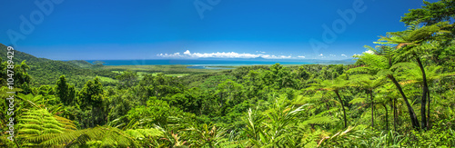 Photo  Stunning panoramic view of the daintree rain forrest and ocean.