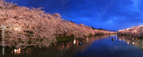 Poster Marron chocolat 弘前城址公園の夜桜