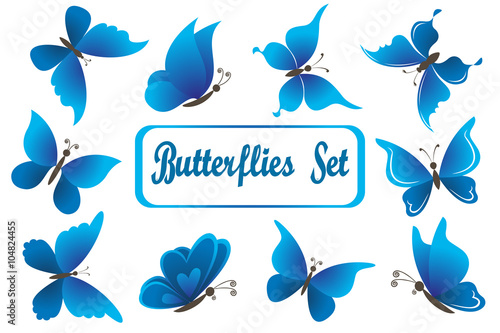 Fotografie, Obraz  Set Blue Butterflies with Opened Wings Isolated on White Background