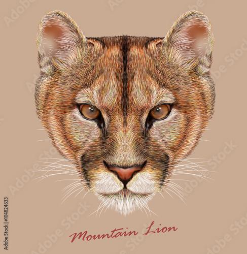 Zwierzęca twarz lwa górskiego. Wektorowy Amerykański kuguara głowy portret. Realistyczny futerkowy portret puma dzika pantera odizolowywająca na beżowym tle.