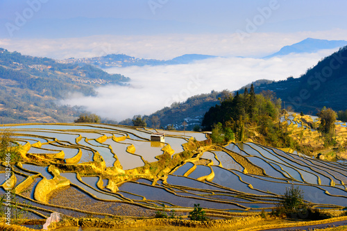 Autocollant pour porte Chine Rice Terraced field in water season in YuanYang, China