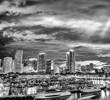 Miami skyline in black and white, Florida - USA