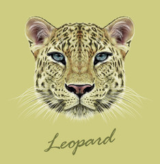 Fototapeta na wymiar Leopard animal face. Vector African, Asian wild cat head portrait. Realistic fur portrait of exotic leopard isolated on yellow background.