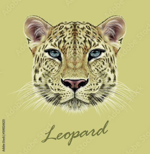 Obrazy na płótnie Canvas Leopard animal face. Vector African, Asian wild cat head portrait. Realistic fur portrait of exotic leopard isolated on yellow background.