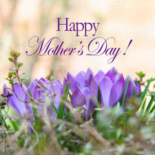 Mothers Day Card With Flowers And Heart Purple Flowers For Mother