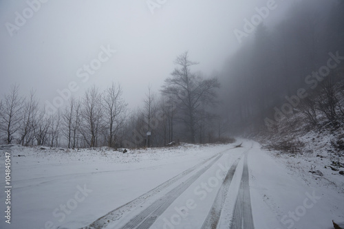 Poster Scandinavië Foggy road in the forest