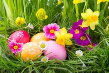 Ostern  -  Ostereier Im Versteck Zwischen Gras Und Blumen