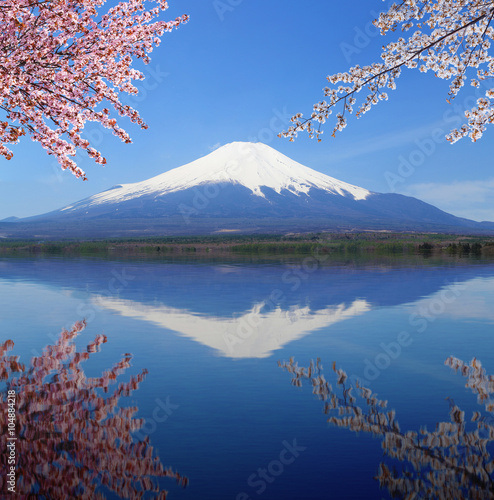 Spoed Fotobehang Reflectie Mt.Fuji with water reflection at Lake Yamanaka, Japan